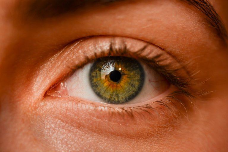 Oczy to jednostkowy narząd. To właśnie dzięki nim widzimy.